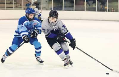 The Best Youth Hockey Sticks